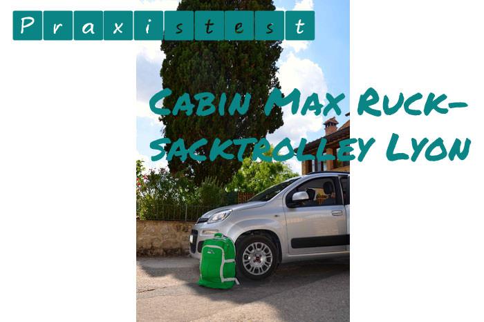 Cabin Max Test